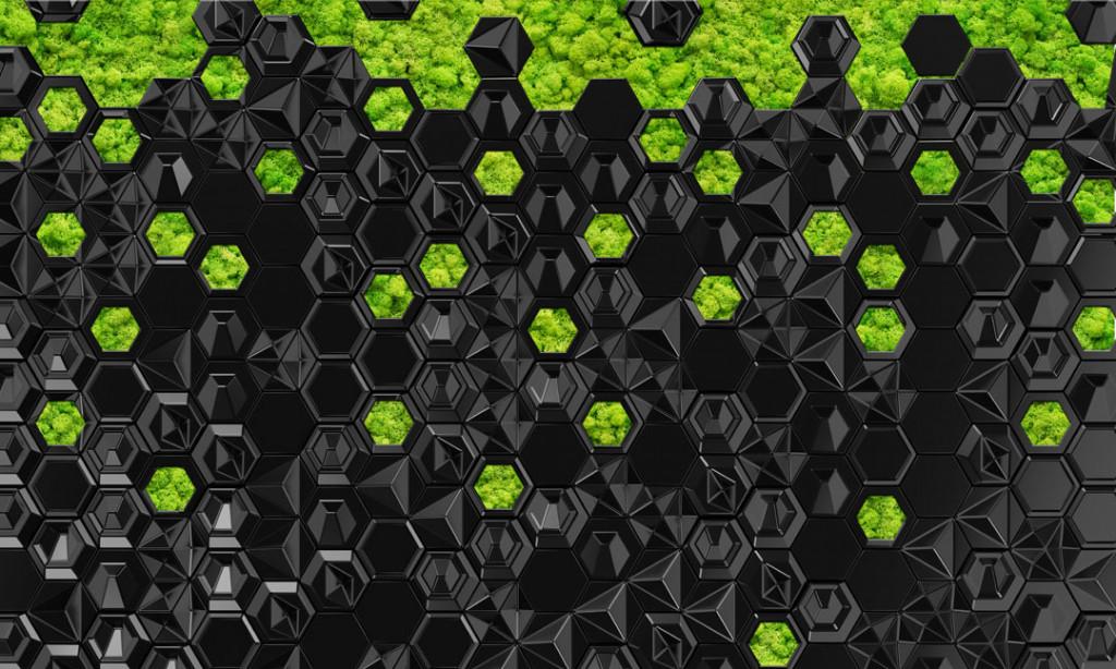 Фотообои Искуственный мох, черный фон