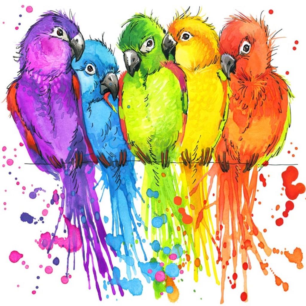 Фотообои Разноцветные попугаи