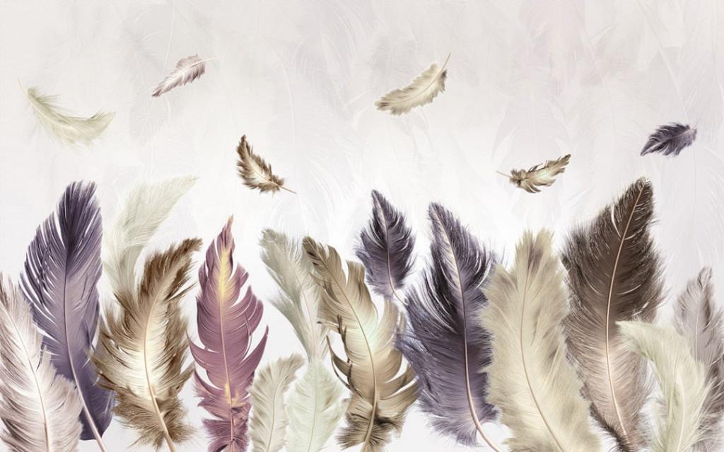 Фотообои Цветные перья на сером фоне