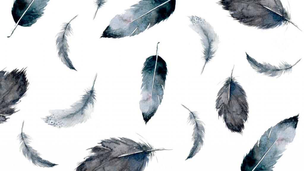 Фотообои Акварельные перья