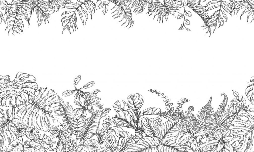 Фотообои Фотообои тропические листья ч\б