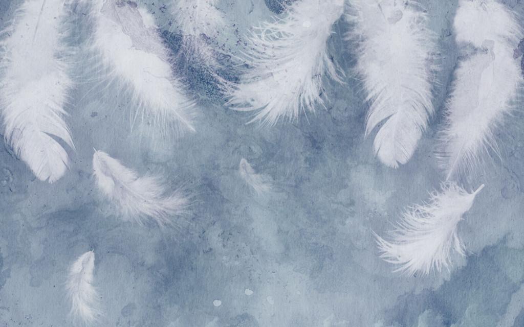 Фотообои перья