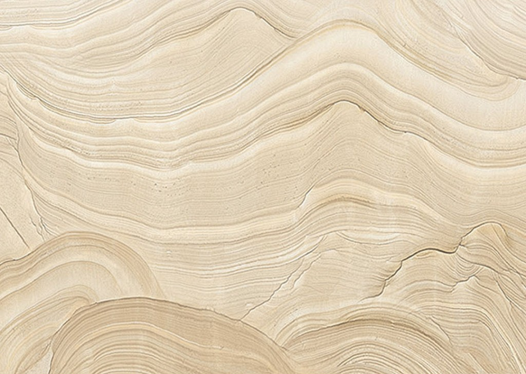Фотообои Текстура среза дерева