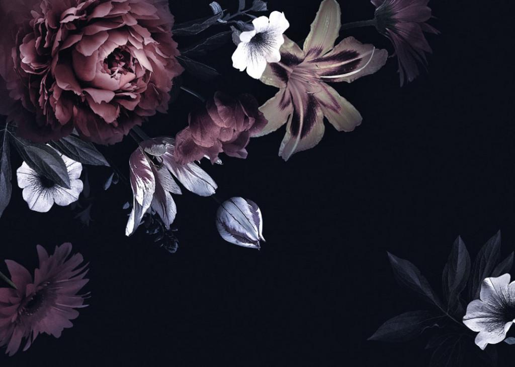 Фотообои Цветы на чёрном