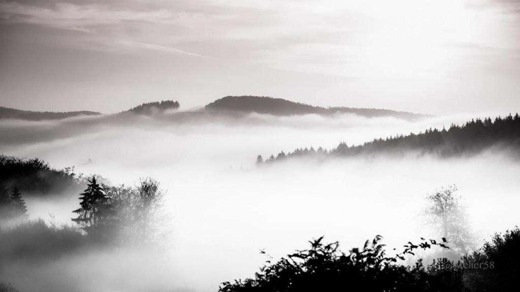 Фотообои Горы и лес в тумане