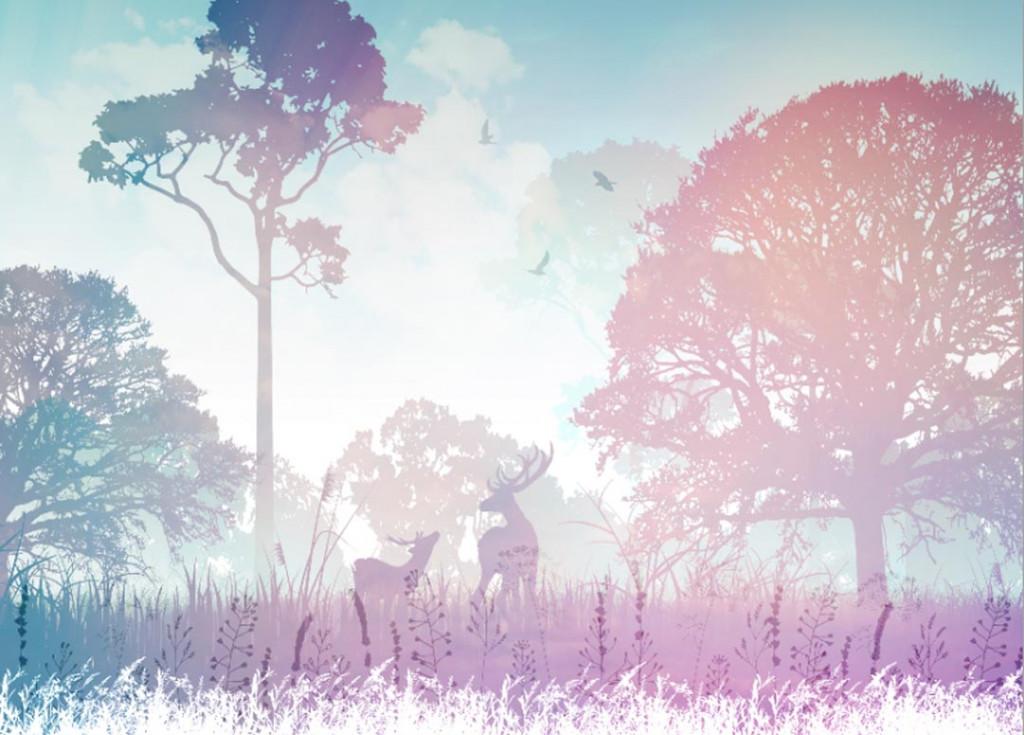 Фотообои Сказочный лес с олеями