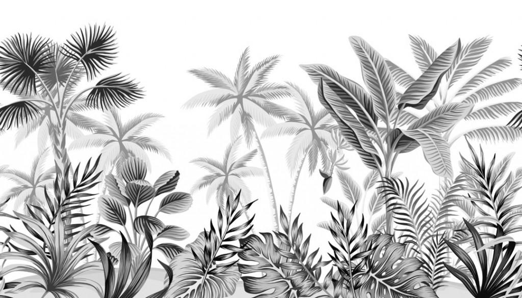 Фотообои Монохромные тропики