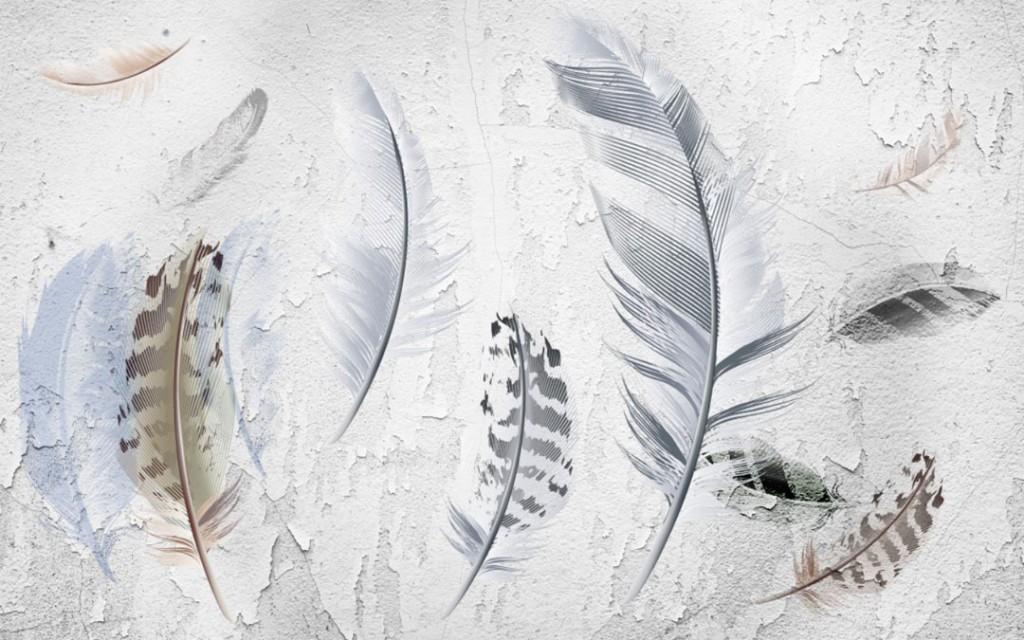 Фотообои  дизайнерские перья