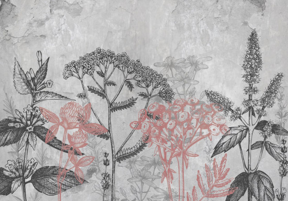 Фотообои Векторные серые растения