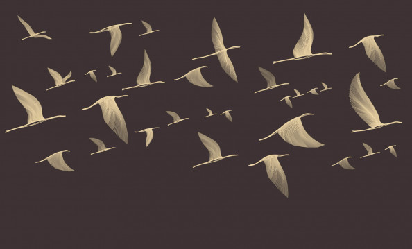 Фотообои птицы