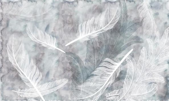 Фотообои Серо-белые перья
