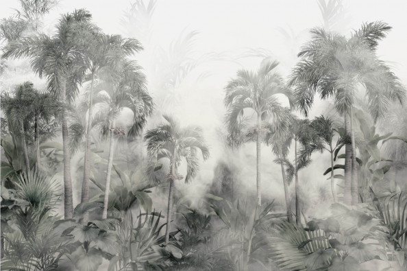 Фотообои пальмы в тумане