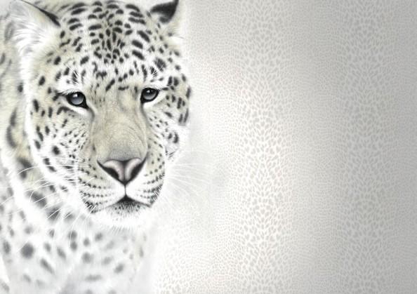 Фотообои Тигрица