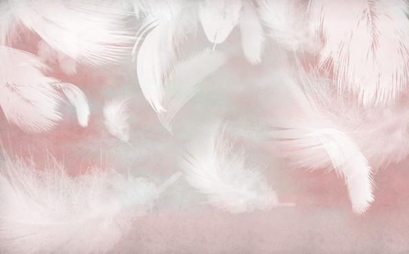 Фотообои Розовые воздушные перья