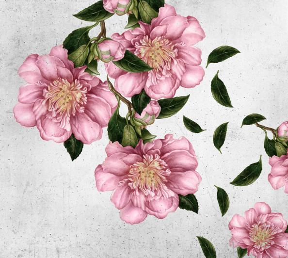 Фотообои цветы
