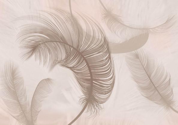 Фотообои перо