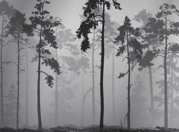 Фотообои Деревья чёрные на сером
