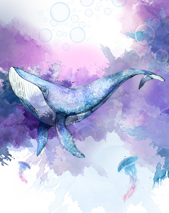 Фотообои Синий кит