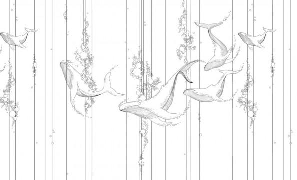 Фотообои киты