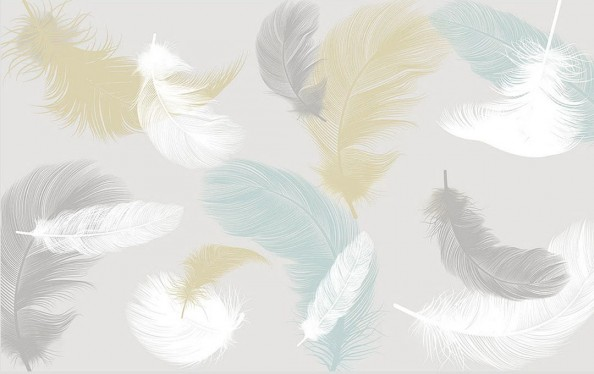 Фотообои Векторные цветные перья