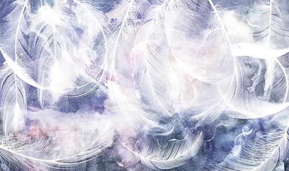 Фотообои Пушистые перья на фиолетовом фоне