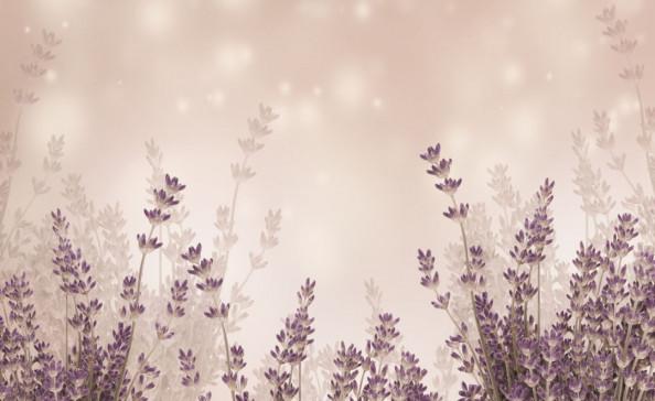 Фотообои Цветение травы