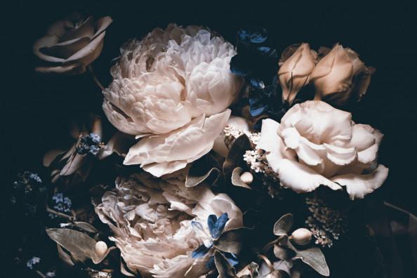 Фотообои  Цветы с черным фоном