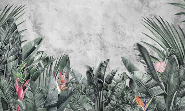 Фотообои Тропики и бетон