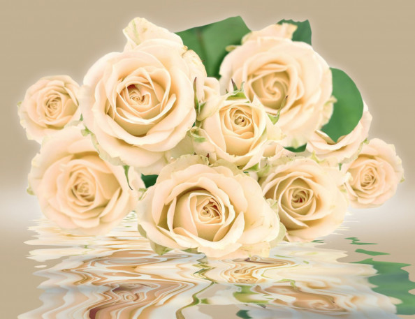 Фотообои букет роз