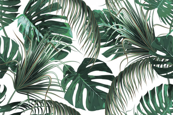 Фотообои Листья папоротника