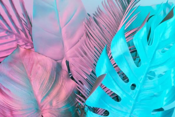 Фотообои Цветные листья с дизайном