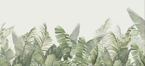 Фотообои Бамбуковые листья