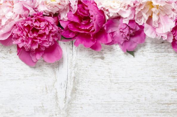 Фотообои Цветущие пионы на деревяной текстуре