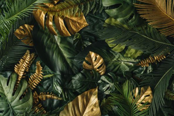 Фотообои Золотые листья тропики