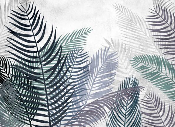 Фотообои Листья финиковой пальмы
