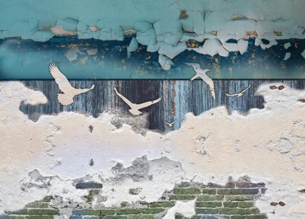 Фотообои Птицы и винтажная стена