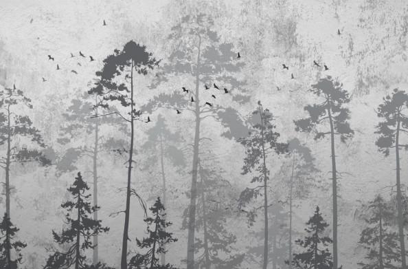 Фотообои Птицы в лесу