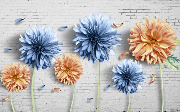 Фотообои Разноцветные хризантемы