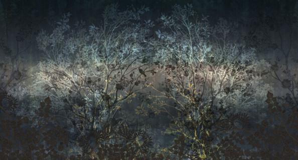 Фотообои Деревья на черном фоне