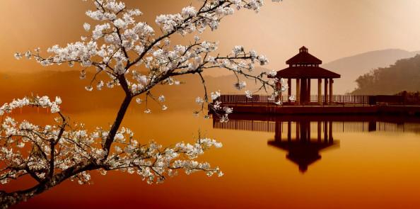 Фотообои восточный стиль