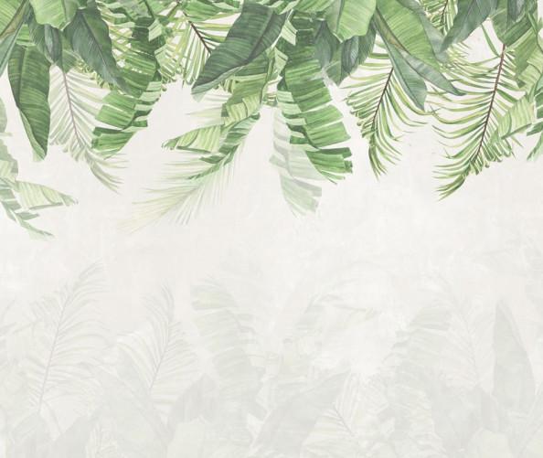 Фотообои Дизайнерские листья сверху