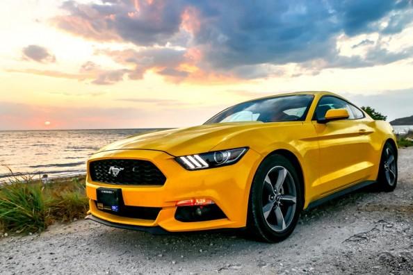 Фотообои Mustang