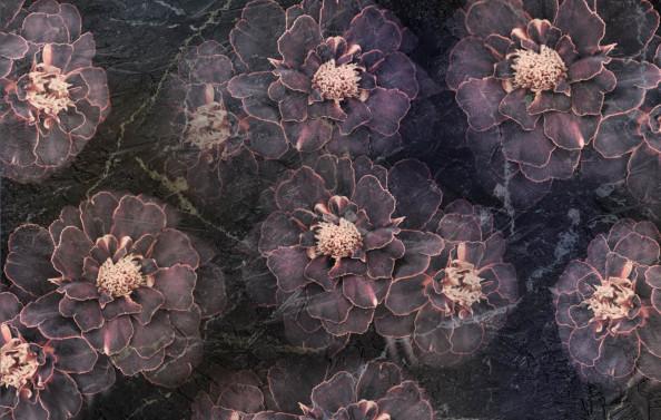 Фотообои flower