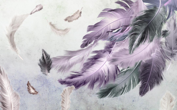 Фотообои Красивые разноцветные перья