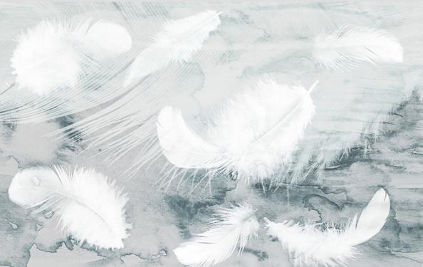 Фотообои Пушистые перья на акварели