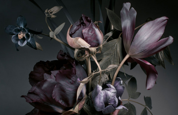 Фотообои Цветочная композиция