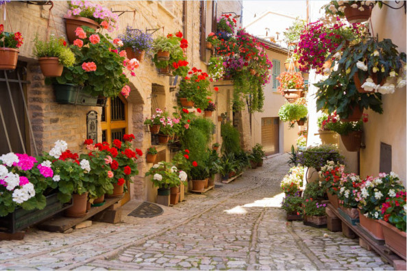 Фотообои Старинная улочка с цветами
