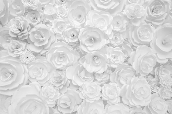 Фотообои бумажные розы