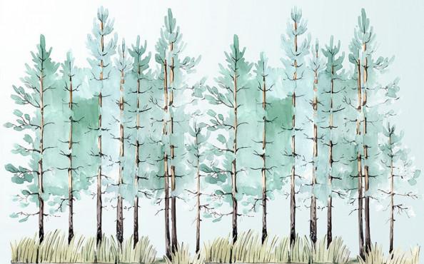 Фотообои  Акварельный лес