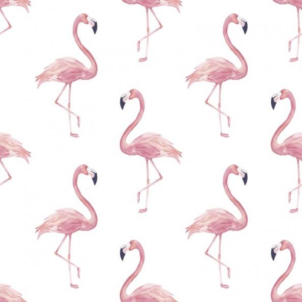Фотообои Розовый фламинго